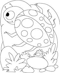 insect coloring pages preschool insects page ladybug egg shell cute colouring pag