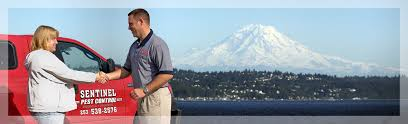 pest control tacoma wa. Unique Tacoma Httpsentinelpestcomdevwpcontentuploads And Pest Control Tacoma Wa N