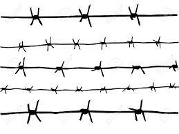barbed wire fence drawing. Drawing Of The Barbed Wire Stock Photo - 10955333 Fence Y