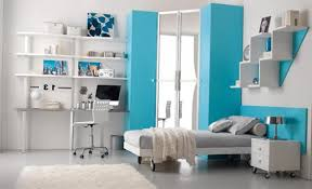 Small Picture Teenager Bedroom Home Design Styles
