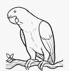 book free printable angry bird coloring pages 1 1208x1246 beautiful bird parrot coloring colour drawing hd wallpaper