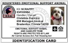 Emotional support animal real Vest Registered Emotional Support Animal Customized Id Card Working Service Dog Esa Id Cards For Your Emotional Support Dog