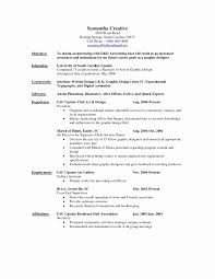 Free Resume Consultation Consultation Dissertation Free Services Writing RESUME 14