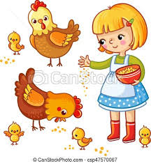 Girl feeding hens and chickens. Girl feeding hens and chickens on a ...
