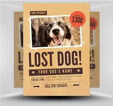 how to make lost dog flyers lost dog flyer template 1 flyerheroes
