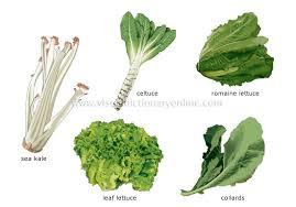 Food Kitchen Food Vegetables Leaf Vegetables 1 Image