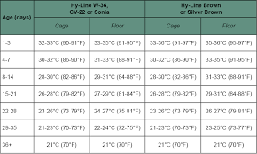 Chick Temperature Chart Hyline House Temperature And Relative Humidity Chickens