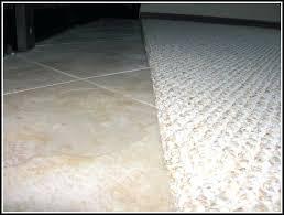 carpet to tile transition ideas strip menards