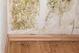 mold mitigation cost. Wonderful Mitigation Throughout Mold Mitigation Cost T