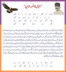 iqbal ka tasawwur e shaheen social web