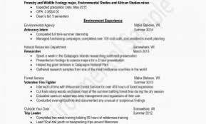 Sample Chronological Resume New Reverse Chronological Resume ...