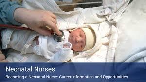 neonatal nursing job profile neonatal nurse job duties