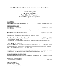 Lifeguard Resume Skills Excellent Lifeguard Resume Bullet Points Contemporary Entry Level 23