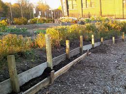 lentol garden renovation