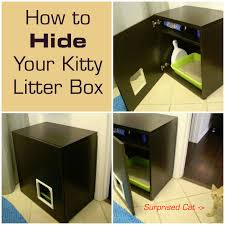 Hide a Cat's Litter Box in a DIY Kitty Litter Cabinet - http://
