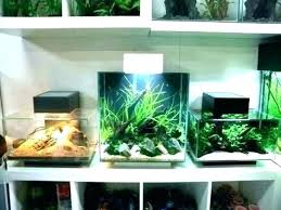 furniture for fish tank. Office Desk Fish Tank Cool Small Ideas Furniture Rental Bay Area For