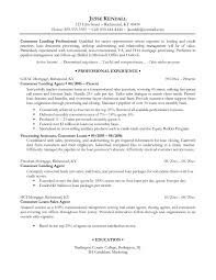 Resume Writing New York  resume writing services best resumes of