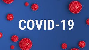 Groupe d'Analyse et de Théorie Economique - UMR5824 - Les recherches au  GATE sur le COVID-19