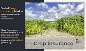 Our insurance programs are designed to meet your farm's unique needs. Crop Insurance Market Anticipated To Reach 53 02 Billion By 2027 At 6 1 Cagr Agriculture Insurance Company Of India Limited Aic American Financial Group Chubb And Many More Ksu The Sentinel Newspaper