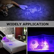 Can You See Bed Bugs With A Black Light Soltuus Rechargeable Uv Black Light Led Flashlight