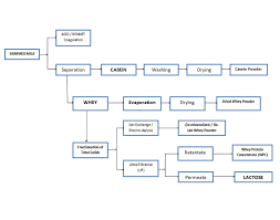 Whey Processing Flow Chart 43 Exhaustive Coffee Manufacturing Process Flow Chart