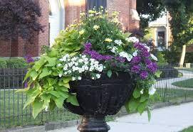 Container Garden Design New Inspiration Ideas