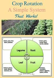 Crop Rotation Chart Vegetable Gardening Garden Crop Rotation A Simple System