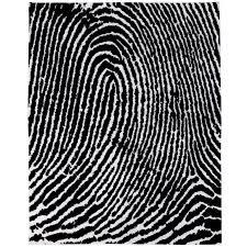 graphic modern thumbprint silk rug