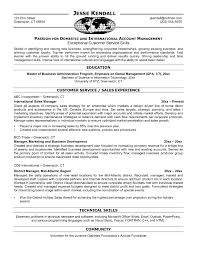 100 Sales Representative Sample Resume Work Resume Template