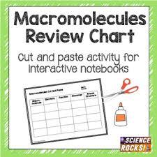Macromolecules Chart Ap Biology Macromolecules Chart Worksheets Teaching Resources Tpt
