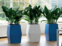 Indoor Flower Pots And Planters