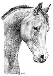 Paard Horse Pen En Oost Indische Inkt 2013 Printout