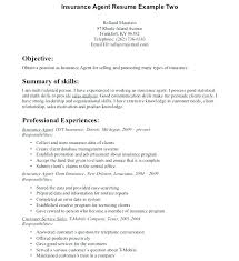 Insurance Agent Job Description For Resume Interesting Auto Insurance Adjuster Resume Examples Objective Spacesheepco