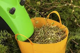 a leaf shredder can be used to create mulch that can protect plants against extremely cold