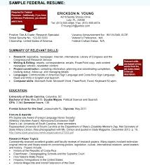 Government Job Resume Datainfo Magnificent Government Jobs Upload Resume