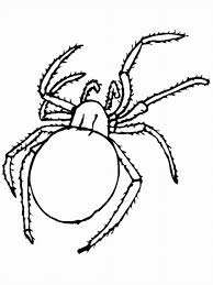 Small Picture Bug insect in Bug Coloring Pages Coloring Page Blog