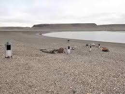 beechey island graves