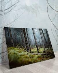 wooded escape big wall décor