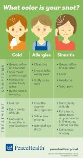 Infographic: What color is your snot? | Healthy You