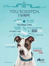 animal shelter volunteer poster. Austin Humane Society 2010 Print Volunteer Dog For Animal Shelter Poster Pinterest
