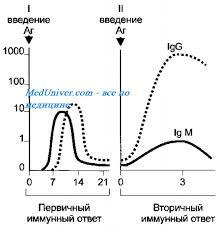 Динамика антителообразования Скорость образования антител АТ  Динамика антителообразования Скорость образования антител АТ Первичный иммунный ответ Вторичный иммунный ответ