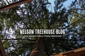 Life In The Trees With The Treehouse Masters  Sia MagazineTreehouse Masters Free Episodes