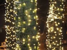 Is There An Easy Way To Check Christmas Lights How To Wrap Trees With Outdoor Lights