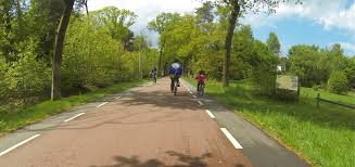 CycleSPEX as <b>design</b> support for <b>cycle</b> highway F261 - The Urban ...