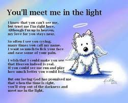 Loss Of A Pet Quotes Adorable Sympathy Quotes For Losing A Pet The Rainbow Bridge Poem Pet