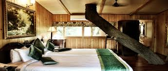 tree house jaipur. Jaipur · Tree House Resort,