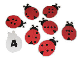 Image result for separating group of 4 objects in different ways ladybirds