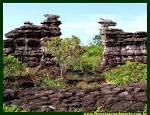 imagem de Alenquer Pará n-13