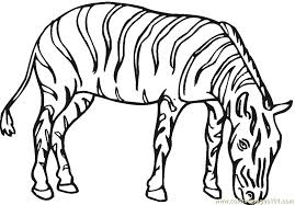 Small Picture Zebra Coloring Page Free Zebra Coloring Pages ColoringPages101com