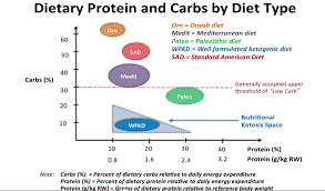 Optimal Ketosis Chart Is Protein In Keto Important Keto Island